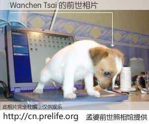 #孟婆前世照相馆# 【Wanchen Tsai 的前世相片】我们都曾从奈何桥上走过,喝下三碗忘川之水烹煮的孟婆汤,忘却了前尘旧事。孟婆前世照相馆,保存着你前世的数码相片。Wanchen Tsai 的前世相片,有图有真相: